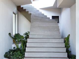 House in Rio 現代風玄關、走廊與階梯
