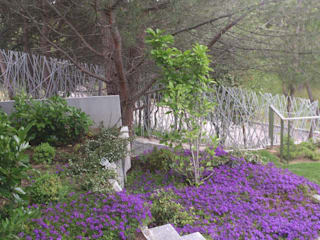 Diferentes proyectos de jardines y terrazas: Jardines de estilo  de IGLESIAS JARDINERÍA Y PAISAJE