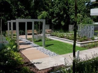Ogród nowoczesny od Sungarden - Projektowanie i urządzanie ogrodów