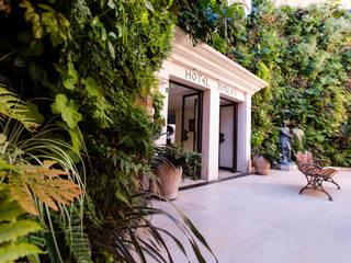 palace saint tropez Jardin tropical par JUNGLE ART Tropical