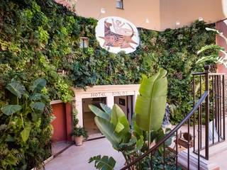 palace saint tropez Hôtels tropicaux par JUNGLE ART Tropical