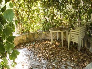 Fairy Garden di Alchimie