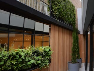 Living wall with mirrors Modern garden by green zone design ltd Modern