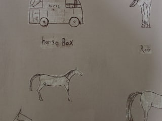 HORSE BOX:   by Clare Haxby Art Studio