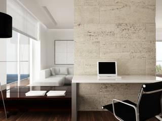 Estudios y oficinas minimalistas de living box Minimalista