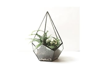 Teadrop terrarium:  in stile  di Expat Design Shop