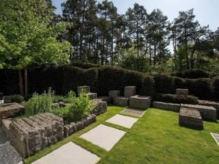 Modern style gardens by Naturform Japangärten & Koiteichbau Modern