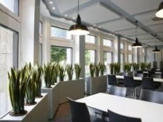 Mitarbeiter-Casino:  Bürogebäude von die Raumbegrüner