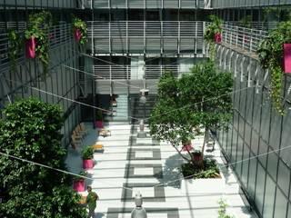 Pflanzen: Botschafter der Gesundheit im Zahnklinikum Münster:  Kongresscenter von die Raumbegrüner