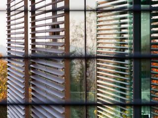 Tommy House Finestre & Porte in stile moderno di SARA DALLA SERRA ARCHITETTO Moderno