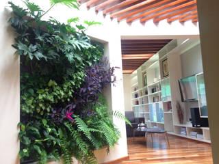 Jardín Vertical :  de estilo  por ENVERDE