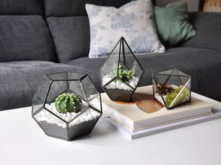 Terrario Dodecaedro:  de estilo  de ZetaGlass
