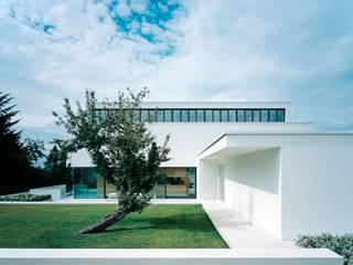 Villa P: moderner Garten von Philipp Architekten - Anna Philipp