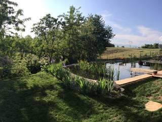 Jardín de estilo  de suingiardino