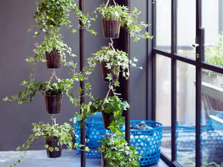 Pflanzenfreude.de 室內景觀