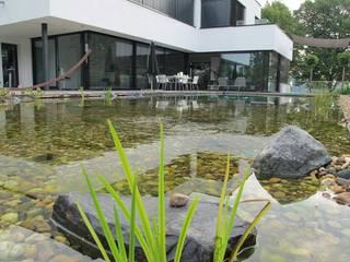 Jardines de estilo moderno de Nagelschmitz Garten- und Landschaftsgestaltung GmbH Moderno
