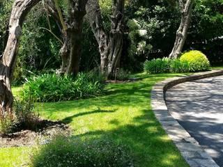 Nazarian Espaces Verts Jardins mediterrâneos