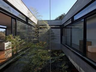 Casa | LM |: Jardins de inverno  por Marcos Bertoldi