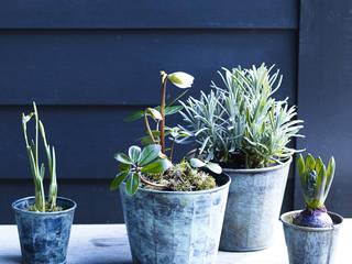 Brent Verdigris Plant Pot Rowen & Wren GiardinoFioriere & Vasi