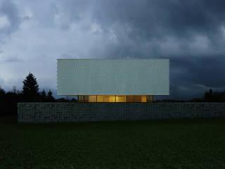 Black&White Дома в стиле минимализм от ALEXANDER ZHIDKOV ARCHITECT Минимализм