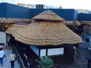 Discoteca de Junco Africano Bares y clubs de estilo tropical de GRUPO ROMERAL Tropical