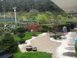 abelia peyzaj Modern style gardens