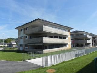 Mehrfamilienhäuser mit Stil Industriale Häuser von Mäder + Luder Architekten AG Industrial