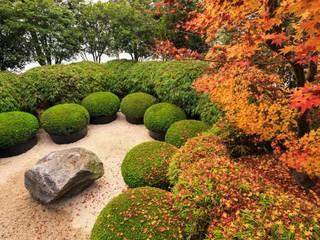 Solitair Rustic style garden