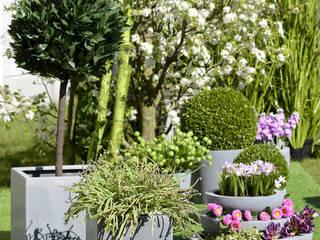Pimp up your Garden Groothandel in decoratie en lifestyle artikelen СадВазони та вази