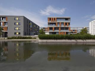 Ansicht vom Park:  Häuser von Koschany + Zimmer Architekten KZA