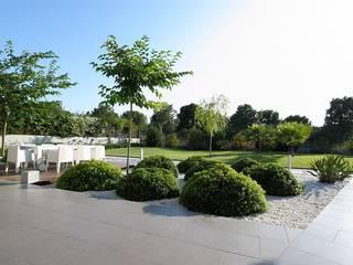 Estudio de paisajismo 2R PAISAJE 庭院