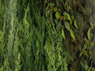 Vertical Gardens Materflora Lda. HouseholdPlants & accessories