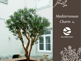 Our Favourite Trees Hotel in stile mediterraneo di Materflora Lda. Mediterraneo
