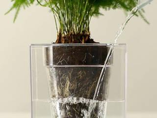 Gnomo 家居用品植物與配件