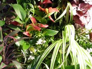 Vertical Flore Interior landscaping