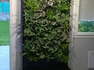 por Vertical Flore, Moderno