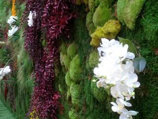 Mur végétal artificiel / stabilisé VERTICAL FLORE:  de style tropical par Vertical Flore, Tropical