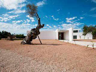 Ivan Torres Architects Modern Garden