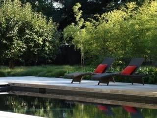 Aussenanlage mit Pool nähe Mainz Moderne Pools von Ecologic City Garden - Paul Marie Creation Modern