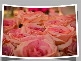 Say it with flowers Groothandel in decoratie en lifestyle artikelen Внутрішнє озеленення