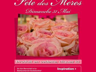 Say it with flowers Groothandel in decoratie en lifestyle artikelen ЇдальняАксесуари та прикраси