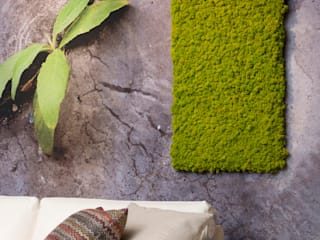 rstudio Minimalist living room