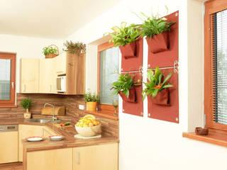 Jardines de estilo minimalista por Butik Bahçe Dikey Bahçe ve Peyzaj Tasarımları
