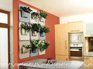 Butik Bahçe Dikey Bahçe ve Peyzaj Tasarımları  – İç Mekan Dikey Bahçeler:  tarz