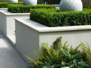 Fern Garden Tropical style garden by Garden Arts Tropical