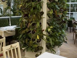 Jardines modernos: Ideas, imágenes y decoración de Pixel Garden Moderno