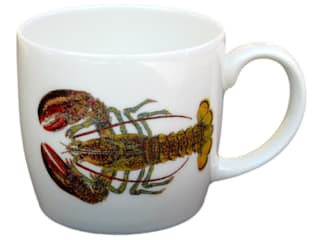 Ingredient & Tropical Mugs: eclectic  by Richard Bramble Collection, Eclectic