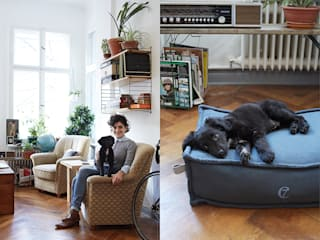 C7 Dog Bed COZY: modern  von Cloud 7 Finest Interiors for Dogs & Dog Lovers,Modern