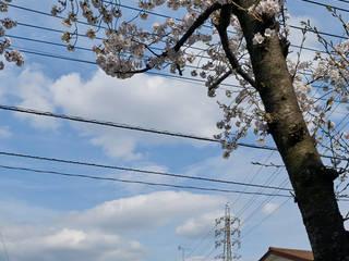 太田窪の家 モダンな 家 の (有)菰田建築設計事務所 モダン