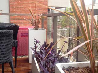 Terrasse de style  par Estudio Nicolas Pierry: Diseño en Arquitectura de Paisajes & Jardines, Moderne